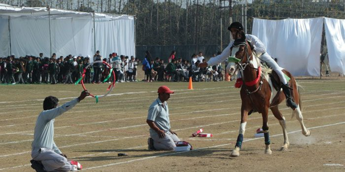 Enjoy The Thrill Of National Level Horse Riding